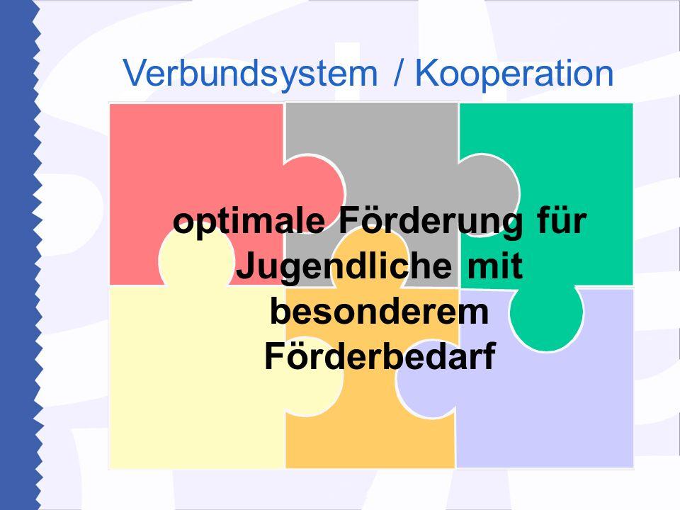 Verbundsystem / Kooperation optimale Förderung für Jugendliche mit besonderem Förderbedarf