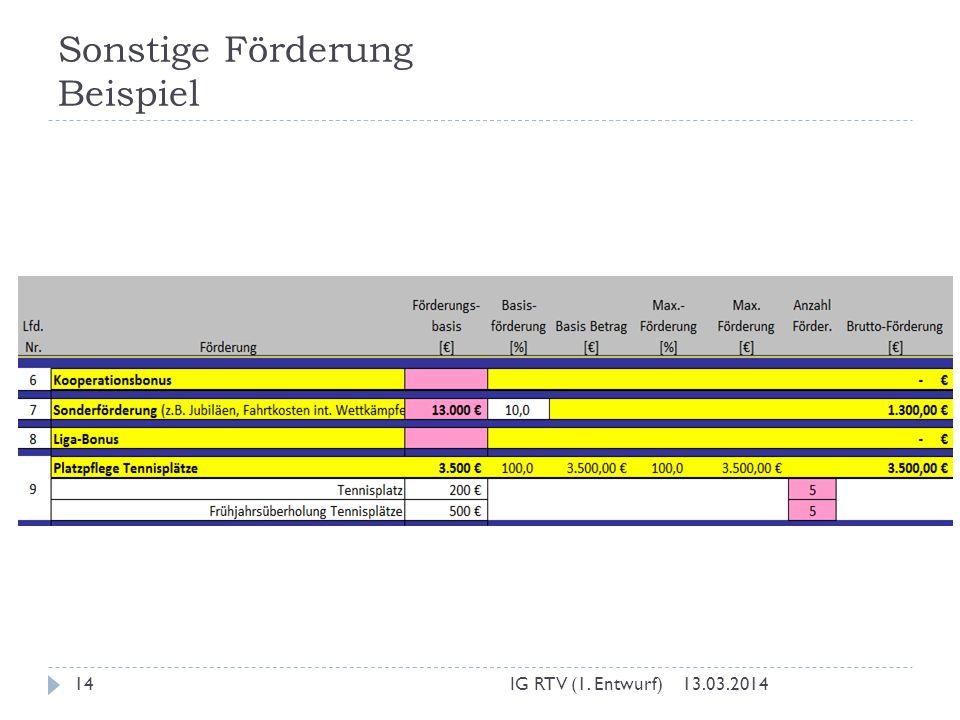 Sonstige Förderung Beispiel 13.03.2014IG RTV (1. Entwurf)14
