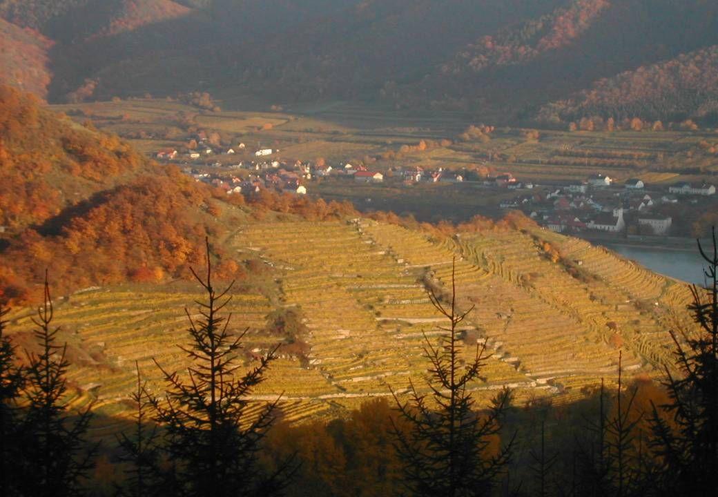8. November 2008 Herbsttagung Ökosoziales Forum - Wels