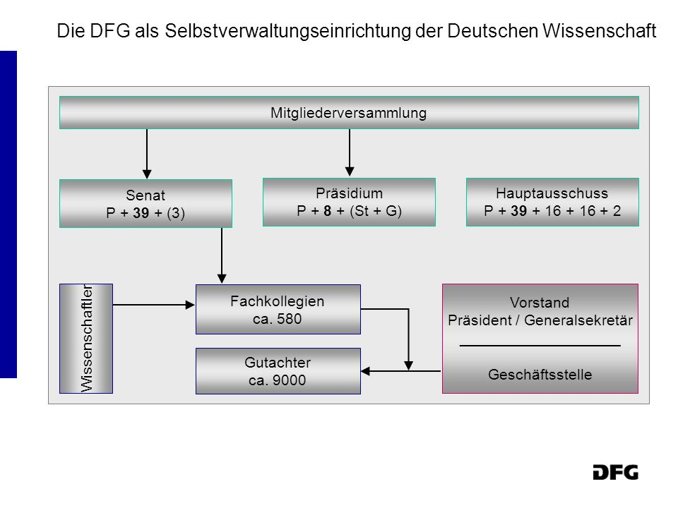 Die DFG als Selbstverwaltungseinrichtung der Deutschen Wissenschaft Mitgliederversammlung Senat P + 39 + (3) Präsidium P + 8 + (St + G) Hauptausschuss
