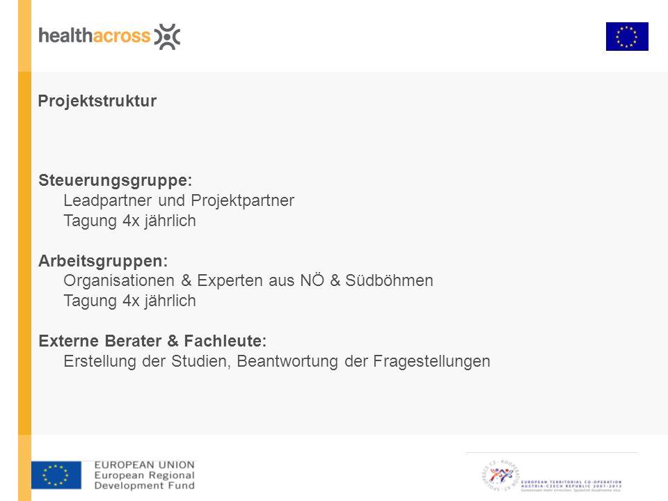 Projektstruktur Steuerungsgruppe: Leadpartner und Projektpartner Tagung 4x jährlich Arbeitsgruppen: Organisationen & Experten aus NÖ & Südböhmen Tagun