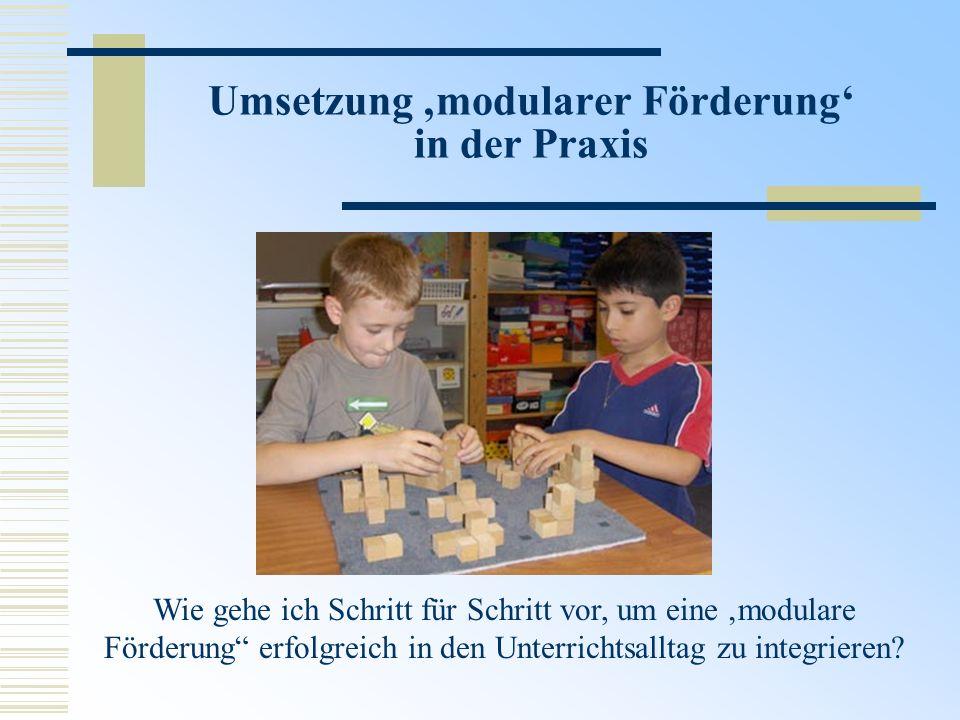 Umsetzung modularer Förderung in der Praxis Wie gehe ich Schritt für Schritt vor, um eine modulare Förderung erfolgreich in den Unterrichtsalltag zu i