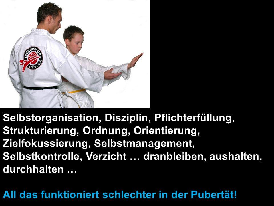 Selbstorganisation, Disziplin, Pflichterfüllung, Strukturierung, Ordnung, Orientierung, Zielfokussierung, Selbstmanagement, Selbstkontrolle, Verzicht