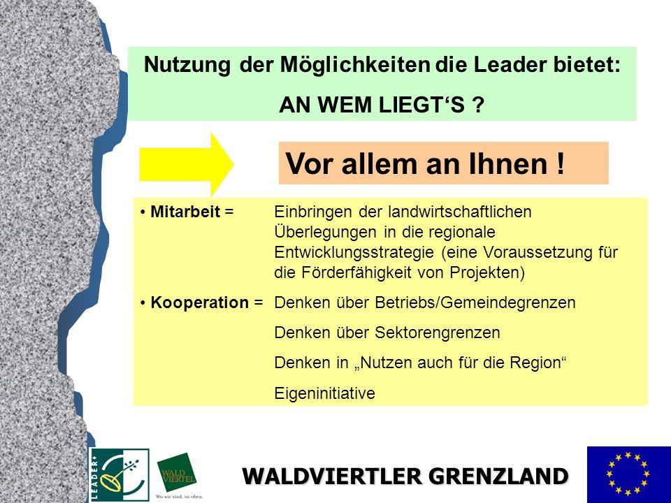 WALDVIERTLER GRENZLAND Nutzung der Möglichkeiten die Leader bietet: AN WEM LIEGTS .