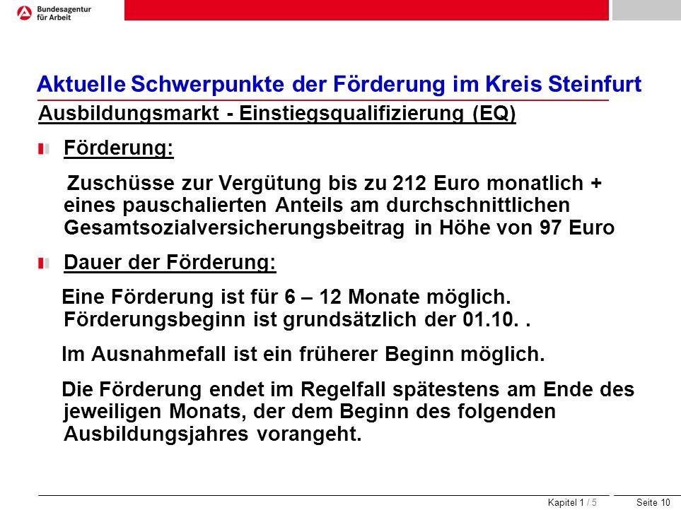 Seite 10 Aktuelle Schwerpunkte der Förderung im Kreis Steinfurt Ausbildungsmarkt - Einstiegsqualifizierung (EQ) Förderung: Zuschüsse zur Vergütung bis