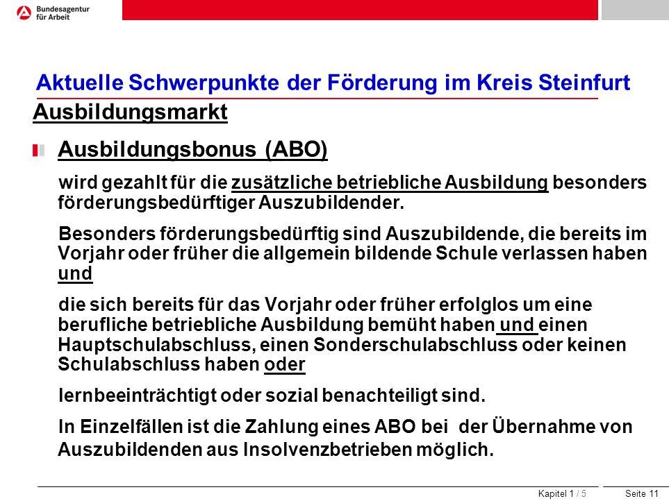 Seite 11 Aktuelle Schwerpunkte der Förderung im Kreis Steinfurt Ausbildungsmarkt Ausbildungsbonus (ABO) wird gezahlt für die zusätzliche betriebliche