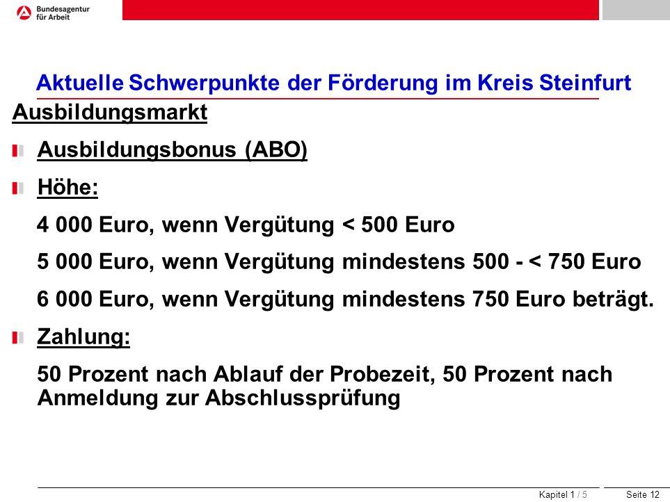 Seite 12 Aktuelle Schwerpunkte der Förderung im Kreis Steinfurt Ausbildungsmarkt Ausbildungsbonus (ABO) Höhe: 4 000 Euro, wenn Vergütung < 500 Euro 5