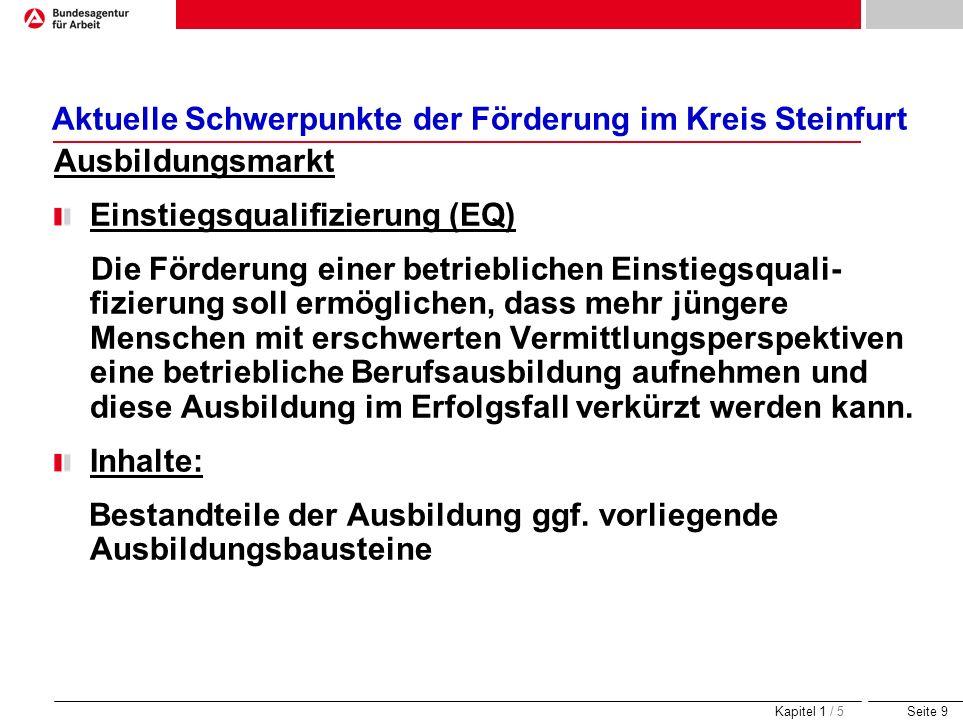 Seite 9 Aktuelle Schwerpunkte der Förderung im Kreis Steinfurt Ausbildungsmarkt Einstiegsqualifizierung (EQ) Die Förderung einer betrieblichen Einstie