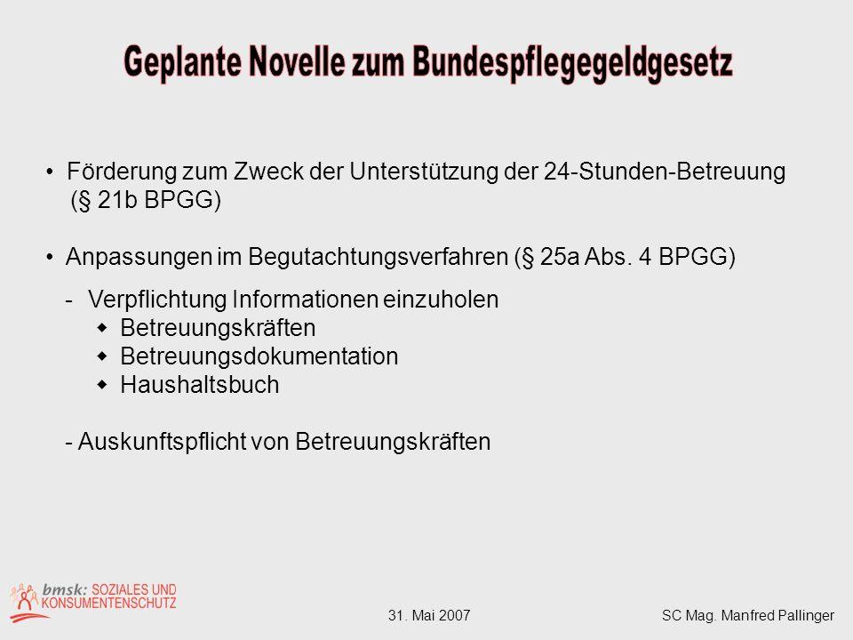 Förderung zum Zweck der Unterstützung der 24-Stunden-Betreuung (§ 21b BPGG) Anpassungen im Begutachtungsverfahren (§ 25a Abs.