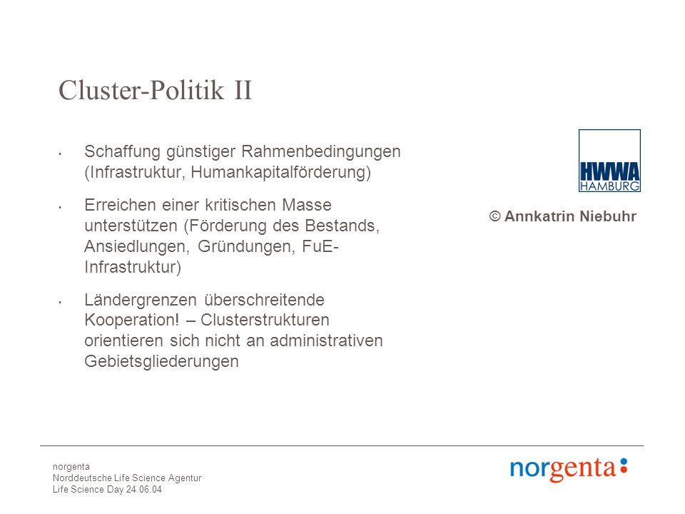 norgenta Norddeutsche Life Science Agentur Life Science Day 24.06.04 Cluster-Politik II Schaffung günstiger Rahmenbedingungen (Infrastruktur, Humankapitalförderung) Erreichen einer kritischen Masse unterstützen (Förderung des Bestands, Ansiedlungen, Gründungen, FuE- Infrastruktur) Ländergrenzen überschreitende Kooperation.