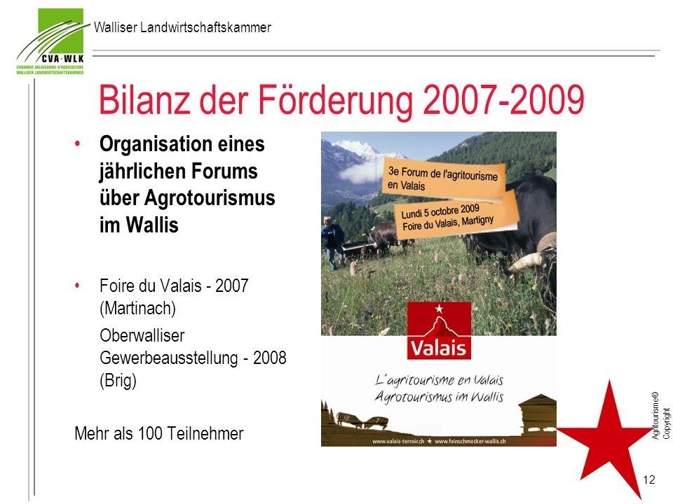 Bilanz der Förderung 2007-2009 Organisation eines jährlichen Forums über Agrotourismus im Wallis Foire du Valais - 2007 (Martinach) Oberwalliser Gewer