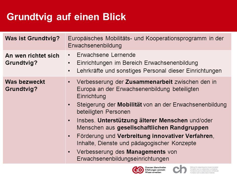 Grundtvig auf einen Blick Was ist Grundtvig?Europäisches Mobilitäts- und Kooperationsprogramm in der Erwachsenenbildung An wen richtet sich Grundtvig?