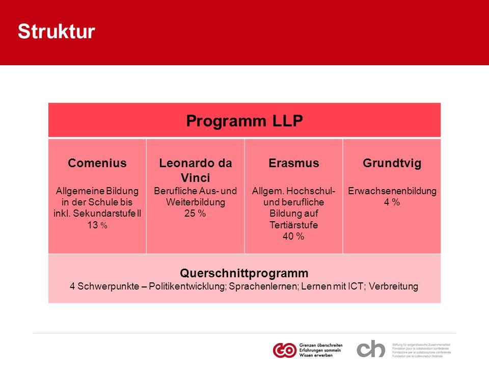 Struktur Programm LLP Comenius Allgemeine Bildung in der Schule bis inkl. Sekundarstufe ll 13 % Leonardo da Vinci Berufliche Aus- und Weiterbildung 25