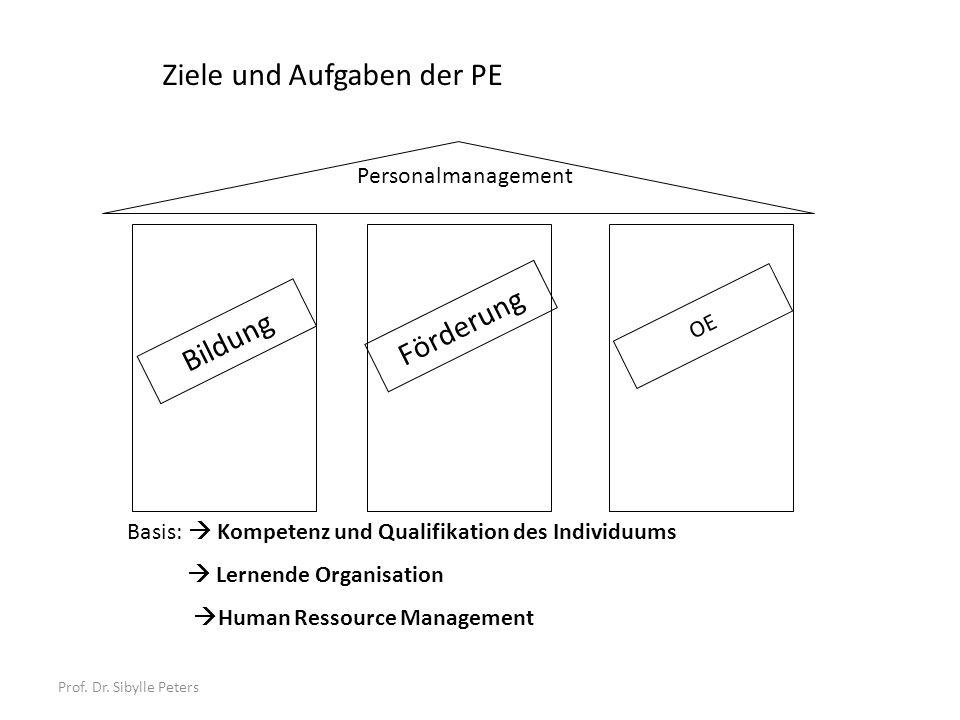 Prof. Dr. Sibylle Peters Basis: Kompetenz und Qualifikation des Individuums Lernende Organisation Human Ressource Management Personalmanagement Ziele