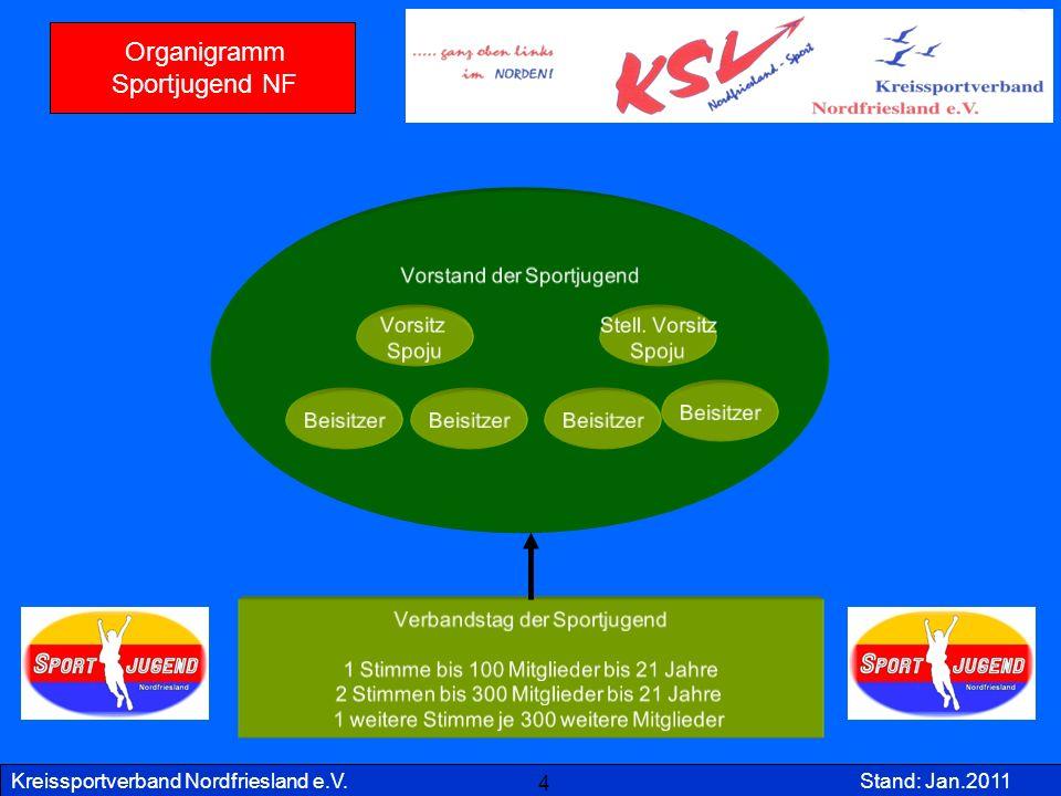 Kreissportverband Nordfriesland e.V.Stand: Jan.2011 Kreisebene Verein Sparte Vorstand Kreissportverband KSV Kreisfachverband KFV Vorsitz Schatz- meister Sport bzw.