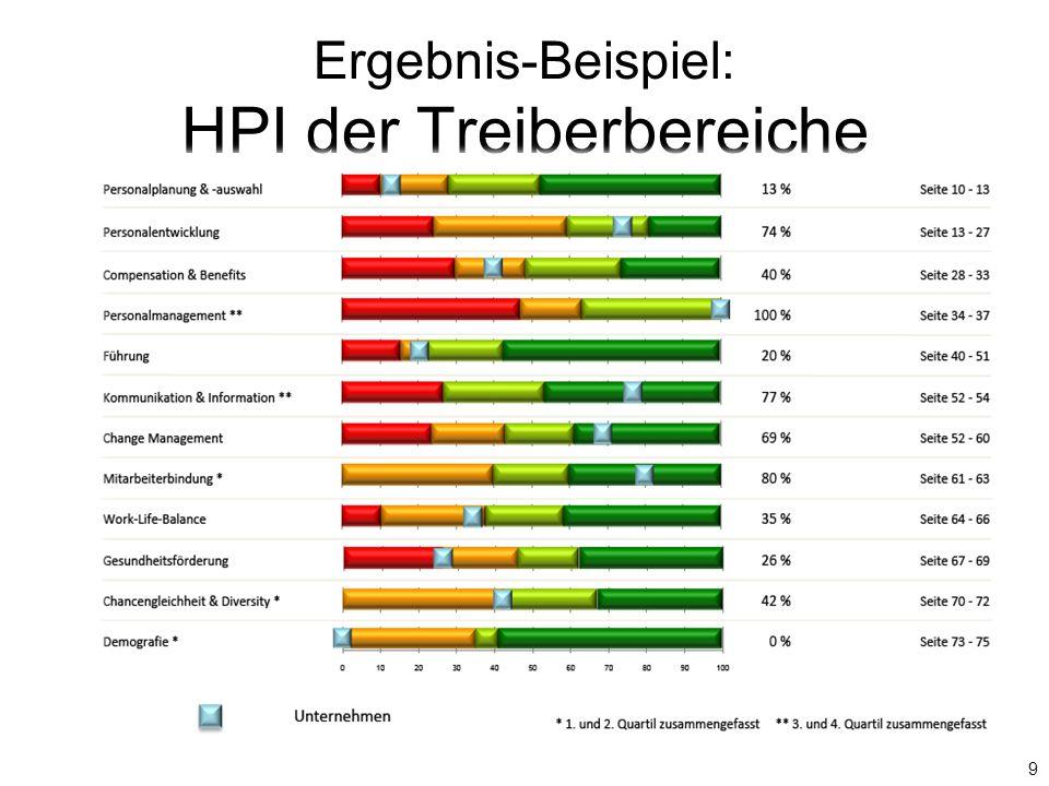 Ergebnis-Beispiel: HPI der Treiberbereiche 9