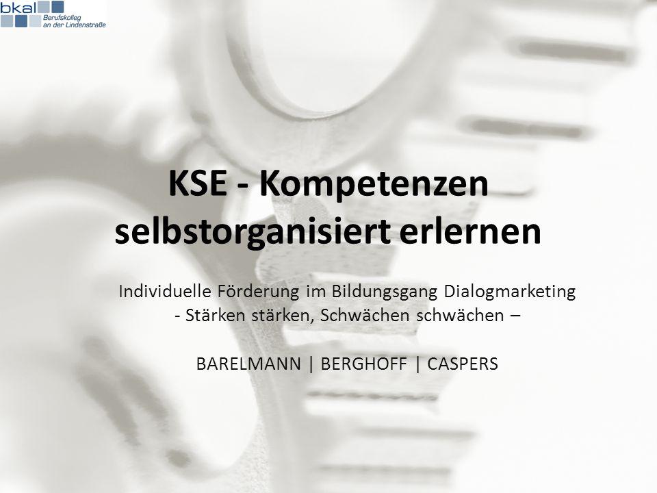 Selbstformulierte Lernziele im Lerntagebuch 07.05.201313Kooperationstag DM | Kurs KSE