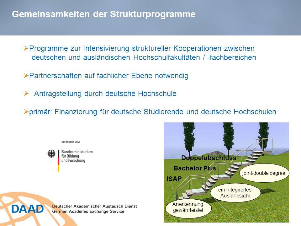 Gemeinsamkeiten der Strukturprogramme Programme zur Intensivierung struktureller Kooperationen zwischen deutschen und ausländischen Hochschulfakultäte