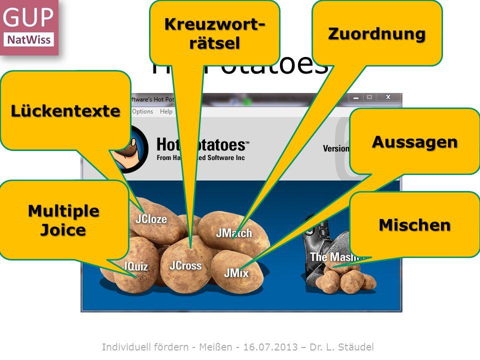 HotPotatoes Lückentexte Multiple Joice Kreuzwort- rätsel Zuordnung Aussagen Mischen Individuell fördern - Meißen - 16.07.2013 – Dr.