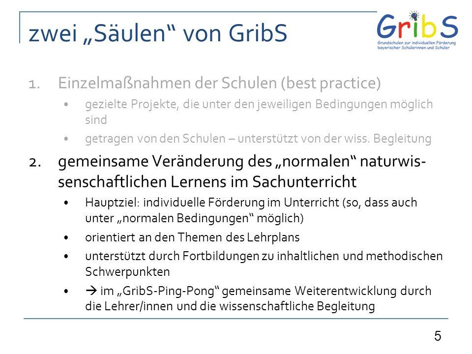 5 zwei Säulen von GribS 1.Einzelmaßnahmen der Schulen (best practice) gezielte Projekte, die unter den jeweiligen Bedingungen möglich sind getragen von den Schulen – unterstützt von der wiss.
