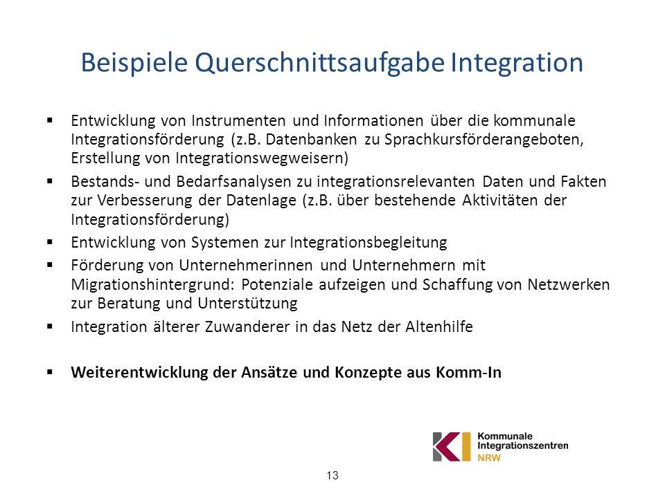 13 Beispiele Querschnittsaufgabe Integration Entwicklung von Instrumenten und Informationen über die kommunale Integrationsförderung (z.B. Datenbanken