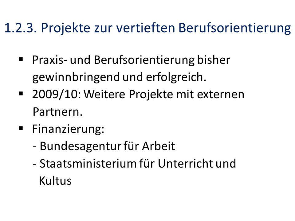 1.2.3. Projekte zur vertieften Berufsorientierung Praxis- und Berufsorientierung bisher gewinnbringend und erfolgreich. 2009/10: Weitere Projekte mit