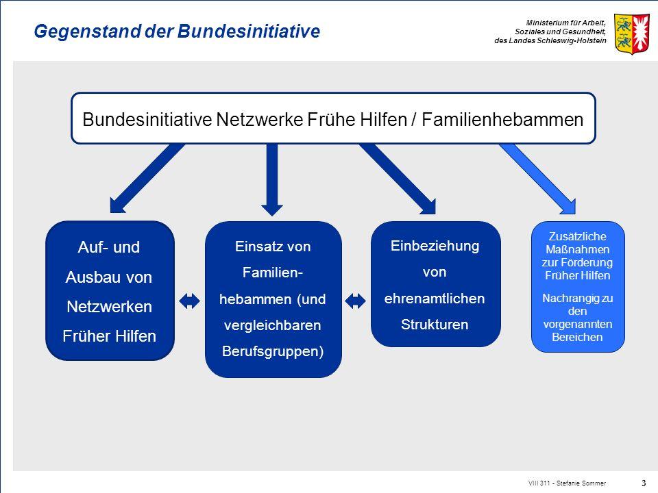 Ministerium für Arbeit, Soziales und Gesundheit, des Landes Schleswig-Holstein VIII 311 - Stefanie Sommer 3 Gegenstand der Bundesinitiative Auf- und A