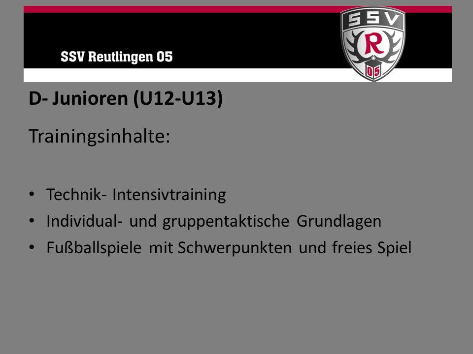 D- Junioren (U12-U13) Trainingsinhalte: Technik- Intensivtraining Individual- und gruppentaktische Grundlagen Fußballspiele mit Schwerpunkten und frei