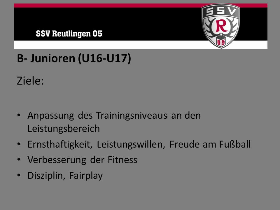 B- Junioren (U16-U17) Ziele: Anpassung des Trainingsniveaus an den Leistungsbereich Ernsthaftigkeit, Leistungswillen, Freude am Fußball Verbesserung d