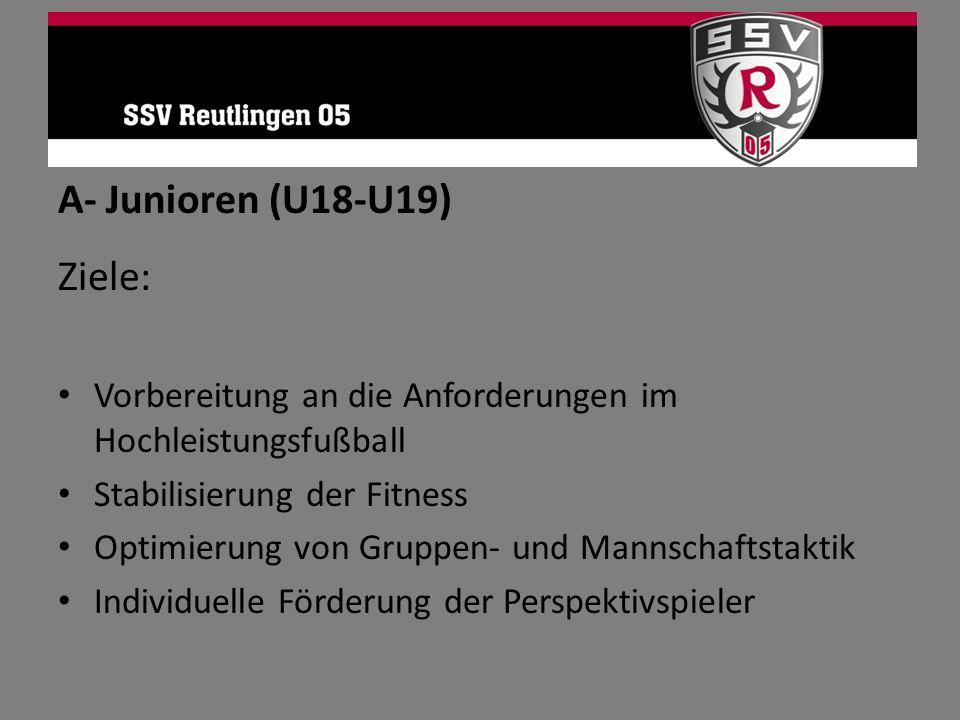 A- Junioren (U18-U19) Ziele: Vorbereitung an die Anforderungen im Hochleistungsfußball Stabilisierung der Fitness Optimierung von Gruppen- und Mannsch