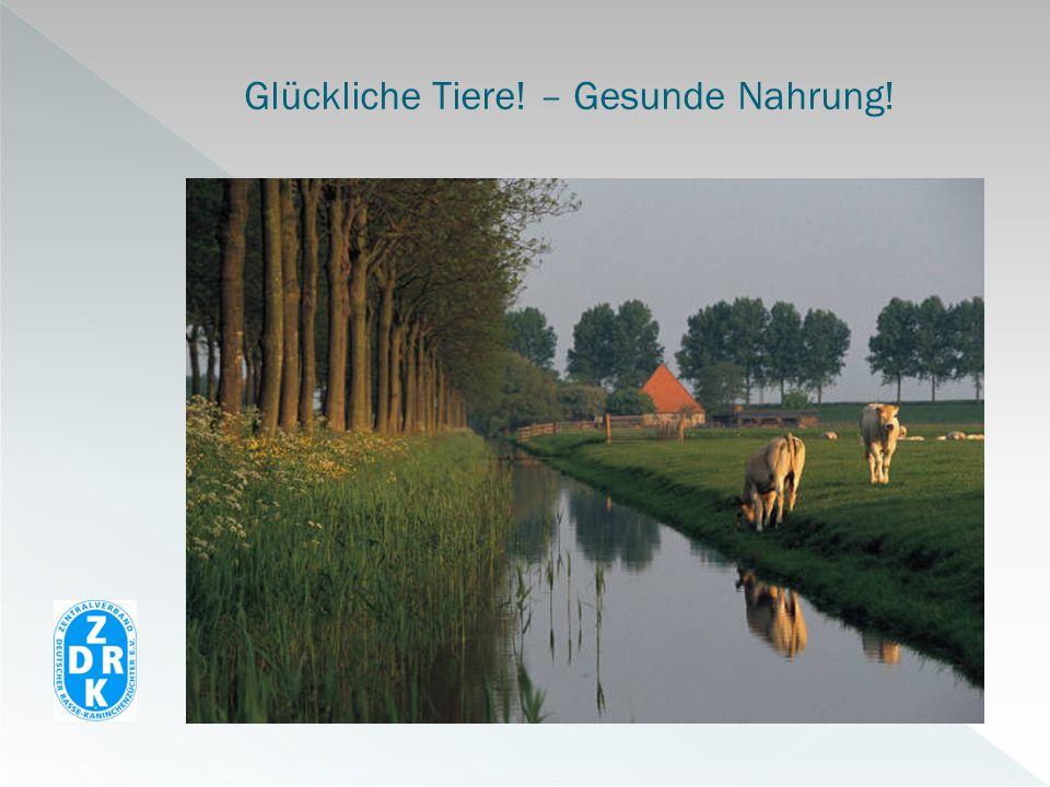 Satzung ZDRK (§ 3, Satz 5): Definition Rasse : Unterscheidung nach Typ und Eigenschaften Bereinigung von Wildwüchsen aus der Vergangenheit.