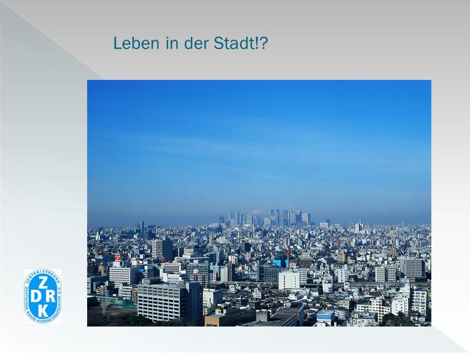 Leben in der Stadt!?