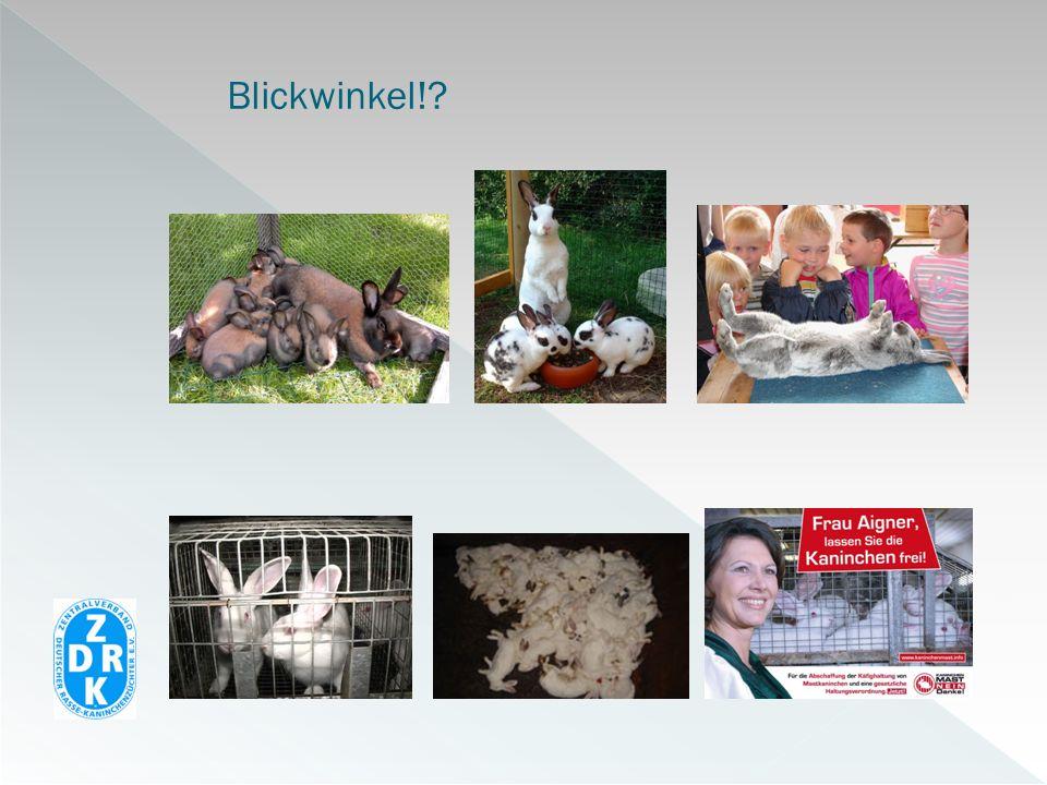 KaninchenhalterHeimtierhalter Universitäten Industrie Behörden BVK GEH