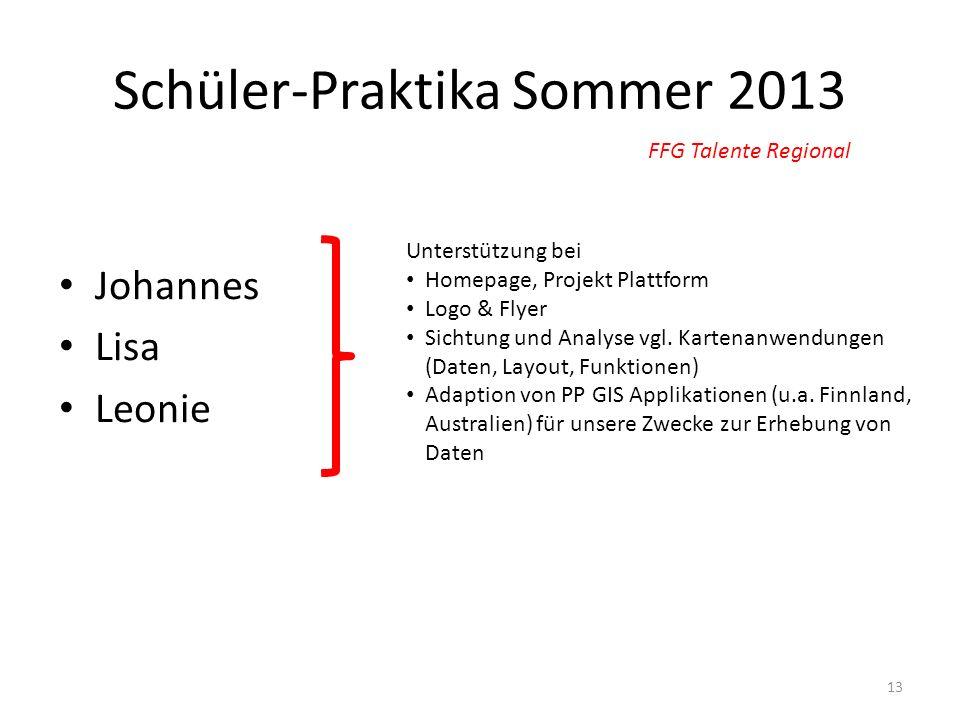 Schüler-Praktika Sommer 2013 Johannes Lisa Leonie 13 FFG Talente Regional Unterstützung bei Homepage, Projekt Plattform Logo & Flyer Sichtung und Anal