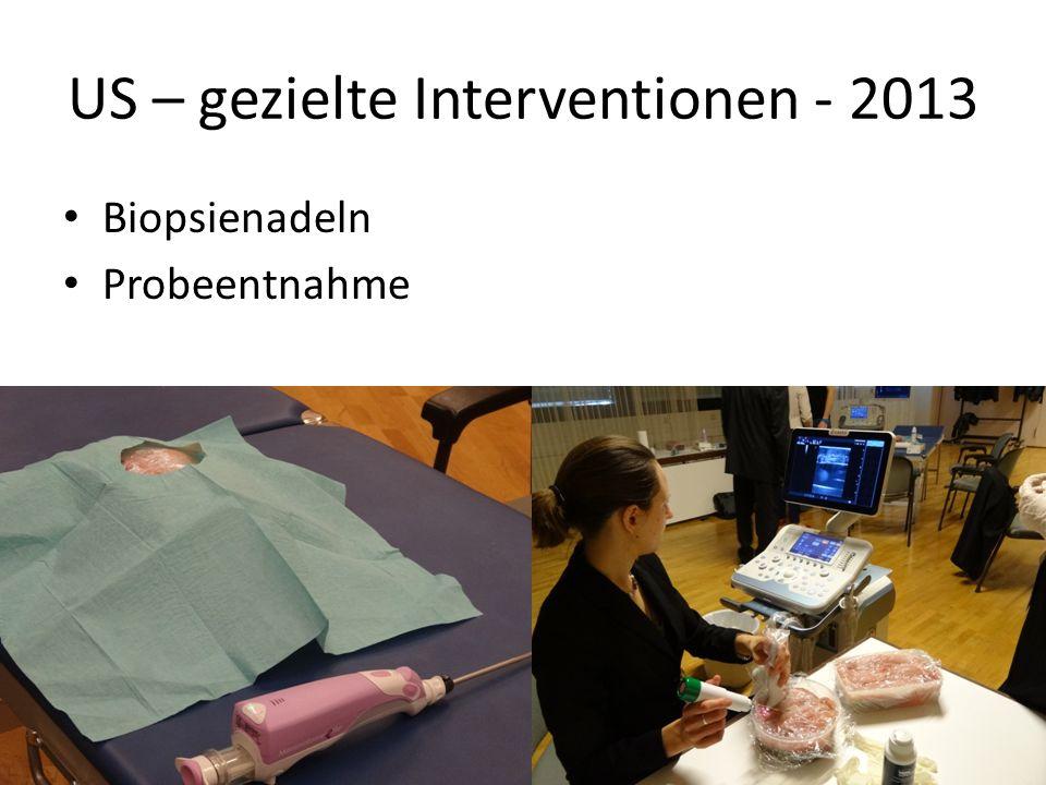 US – gezielte Interventionen - 2013 Biopsienadeln Probeentnahme