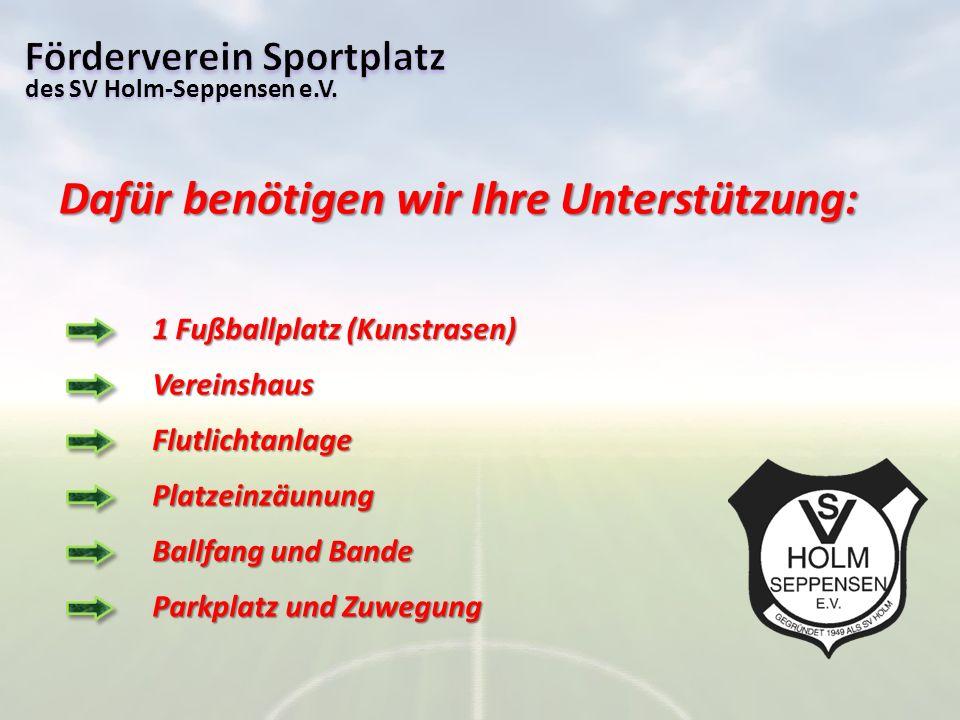des SV Holm-Seppensen e.V. Dafür benötigen wir Ihre Unterstützung: 1 Fußballplatz (Kunstrasen) Ballfang und Bande Flutlichtanlage Platzeinzäunung Vere