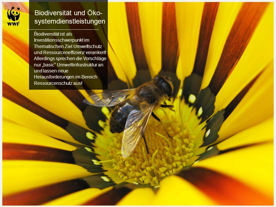 Biodiversität und Öko- systemdienstleistungen. Biodiversität ist als Investitionsschwerpunkt im Thematischen Ziel Umweltschutz und Ressourceneffizienz