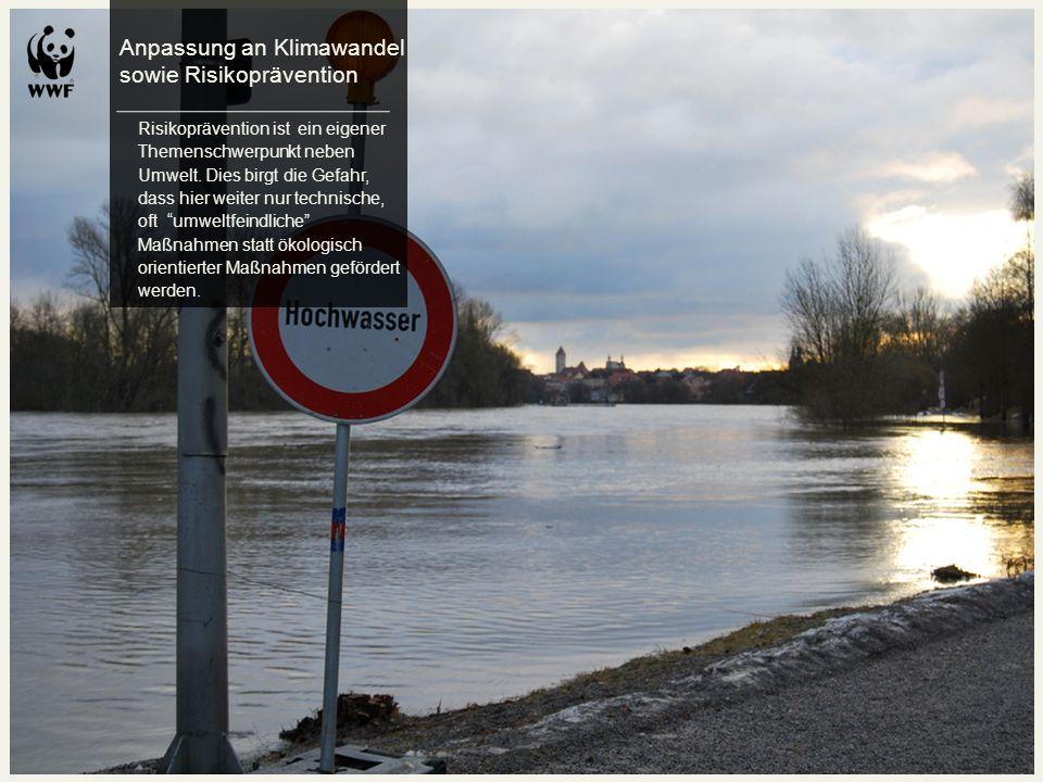 Anpassung an Klimawandel sowie Risikoprävention Risikoprävention ist ein eigener Themenschwerpunkt neben Umwelt. Dies birgt die Gefahr, dass hier weit