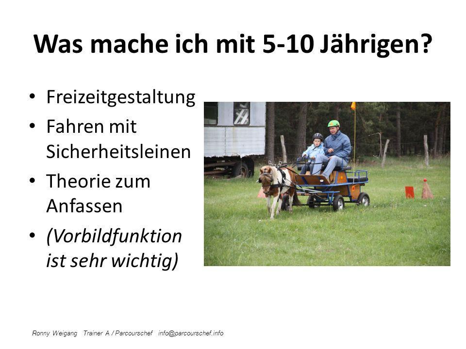 Ausrüstung Kutsche Helme Warnwesten Geschirr Pferde/Ponys Unterrichtsraum Ronny Weigang Trainer A / Parcourschef info@parcourschef.info Verkehrssicher Passend Evtl.