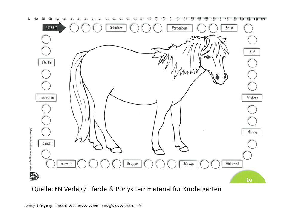 Ronny Weigang Trainer A / Parcourschef info@parcourschef.info Quelle: FN Verlag / Pferde & Ponys Lernmaterial für Kindergärten
