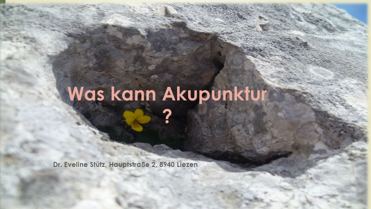 Was kann Akupunktur ? Dr. Eveline Stütz, Hauptstraße 2, 8940 Liezen