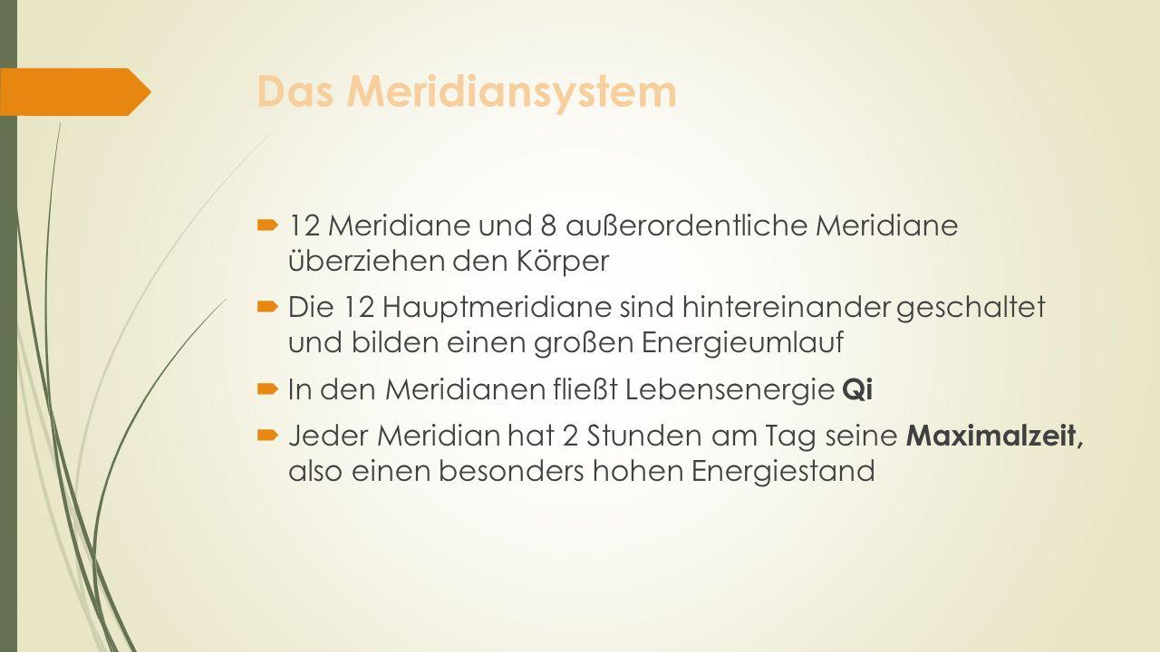 Das Meridiansystem 12 Meridiane und 8 außerordentliche Meridiane überziehen den Körper Die 12 Hauptmeridiane sind hintereinander geschaltet und bilden
