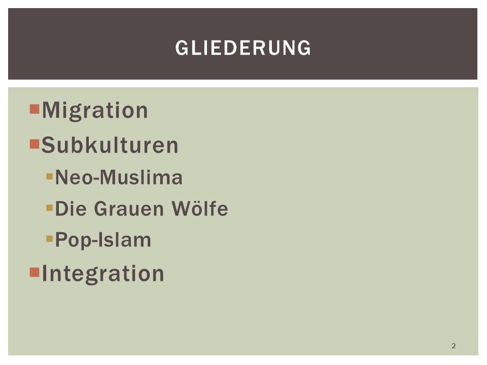Migration Subkulturen Neo-Muslima Die Grauen Wölfe Pop-Islam Integration 2 GLIEDERUNG