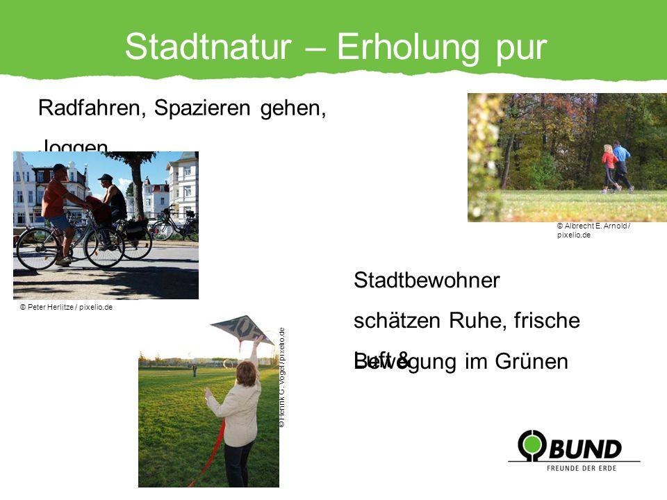 Stadtnatur – Erholung pur Radfahren, Spazieren gehen, Joggen… © Peter Herlitze / pixelio.de © Henrik G. Vogel / pixelio.de © Albrecht E. Arnold / pixe