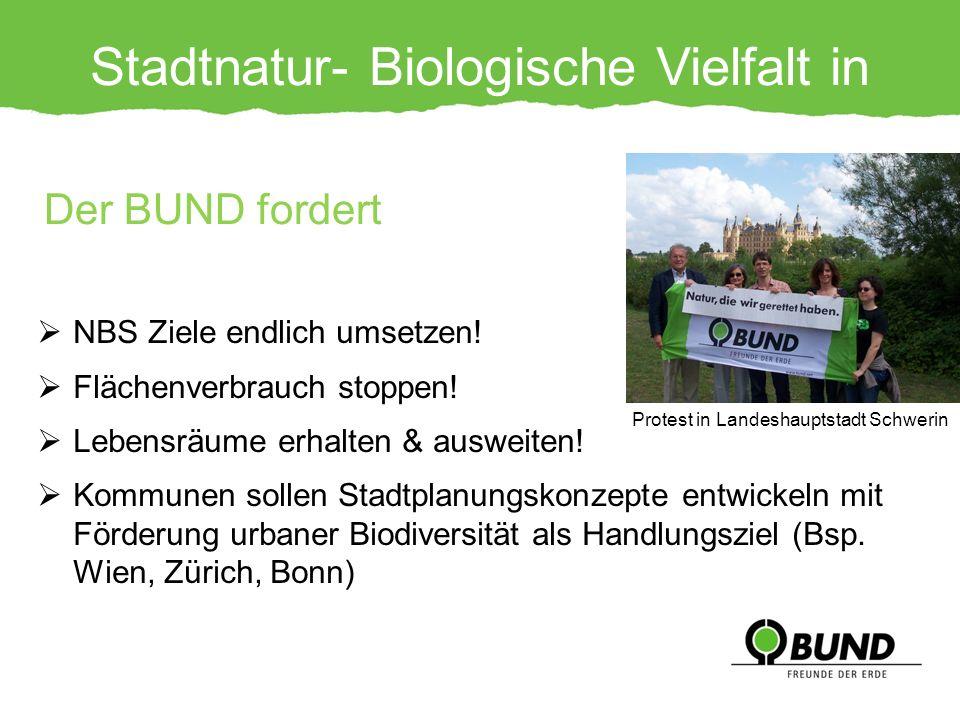 Stadtnatur- Biologische Vielfalt in Gefahr! NBS Ziele endlich umsetzen! Flächenverbrauch stoppen! Lebensräume erhalten & ausweiten! Kommunen sollen St