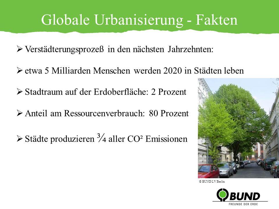 Verstädterungsprozeß in den nächsten Jahrzehnten: etwa 5 Milliarden Menschen werden 2020 in Städten leben Stadtraum auf der Erdoberfläche: 2 Prozent A