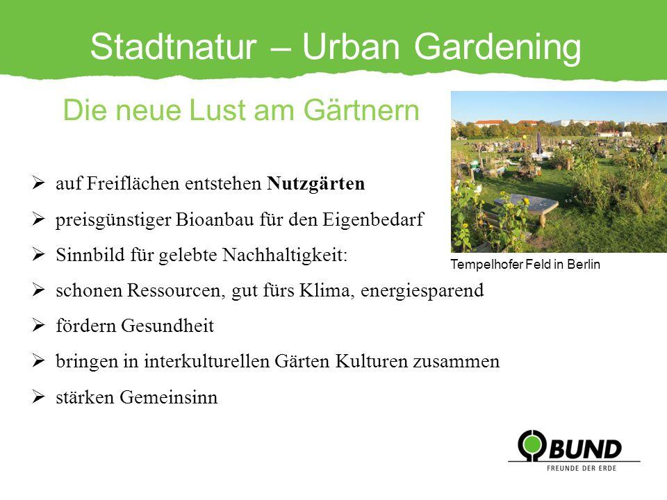 Stadtnatur – Urban Gardening Die neue Lust am Gärtnern auf Freiflächen entstehen Nutzgärten preisgünstiger Bioanbau für den Eigenbedarf Sinnbild für g