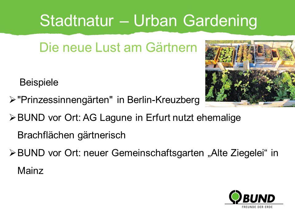 Stadtnatur – Urban Gardening Die neue Lust am Gärtnern Beispiele