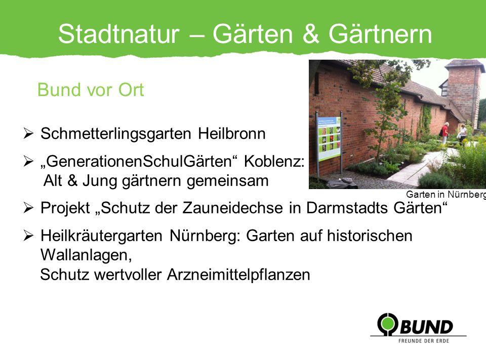 Stadtnatur – Gärten & Gärtnern Bund vor Ort Schmetterlingsgarten Heilbronn GenerationenSchulGärten Koblenz: Alt & Jung gärtnern gemeinsam Projekt Schu