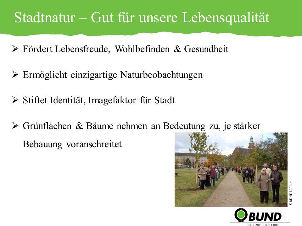 Stadtnatur- Gut für unsere Lebensqualität.